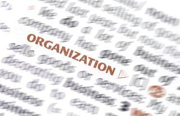 Word Organization