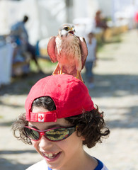 Child with kestrel perched over head