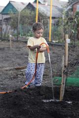 Boy watering seedling