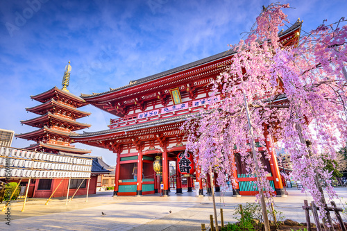 Poster Tokyo Sensoji Temple in Asakusa, Tokyo, Japan