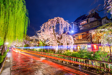 Kyoto, Japan Springtime in the Gion District at Night