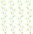 Decorative background of yellow wild flower