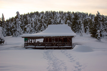 winter mountain panoramic