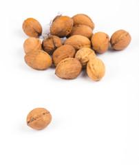 closed walnut ahead closeup on white background