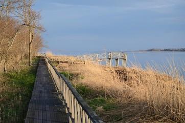 朝の風連湖