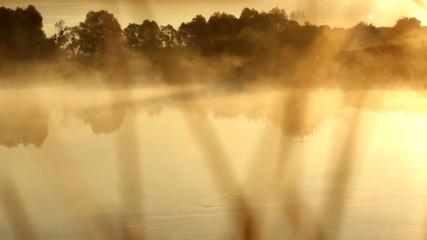 The fiery fog river