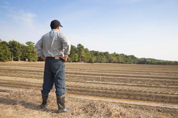 Farmer  standing on farming land