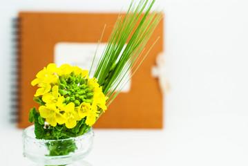 菜の花と稲穂