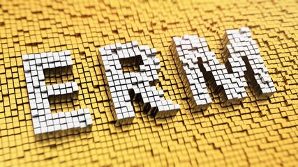 Pixelated ERM