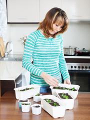 female gardener in green with  seedlings