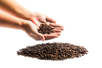 coffee grains on the hands