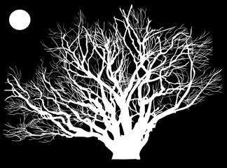 huge white tree on black background