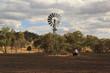 Bushfire Aftermath - 76540886