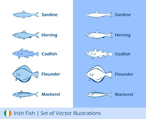 Illustrations of Irish fishes