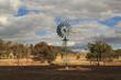 Bushfire Aftermath - 76542440