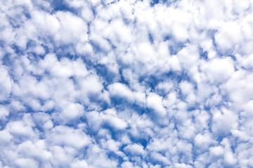 高積雲の空