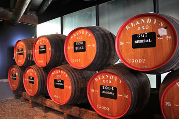 The museum - storage of  wine Madeira