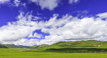 meadow,skyline and landscape in tibet