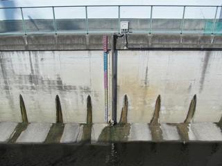水位計のある川と堤防