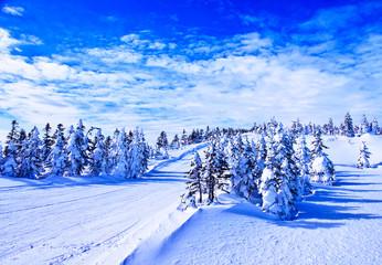 白銀のスキー場