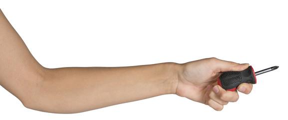 Female hand holding screwdriver