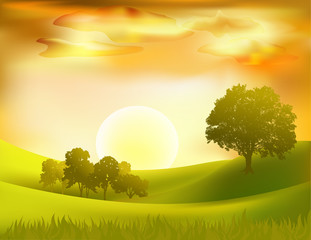 vector sunset  landscape background