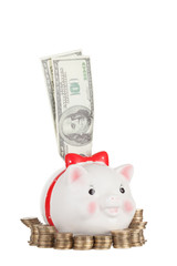 Dollars stick out of pig moneybox