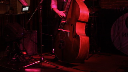 Man playing the contrabass, hand and bow detail