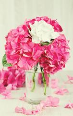 hydrangea flower in vase on wooden surface