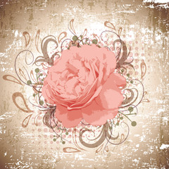Vintage Abstract Peony Flower Background