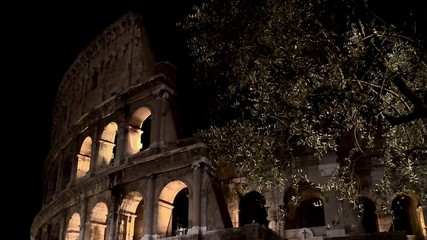Coliseum In Rome at night. Italy.