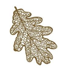 Vector oak leaf