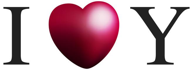 I Love Y Saint Valentin