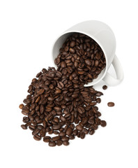 Fresh Coffee Cup
