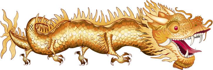 Dragon Chinois entier Illustration