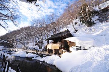 Japanese Onsen Bath