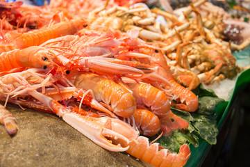 Fresh Prawns (Shrimp)