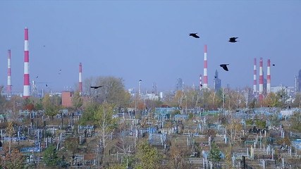 Cemetery on the background of an oil refinery
