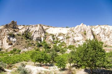 Goreme National Park, Cappadocia. View of a mountain valley