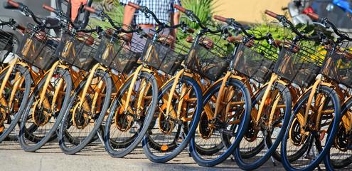 row of bikes in a rental agency
