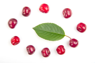 Cherry fruit with beautiful leaf with high Vitamin C in round co