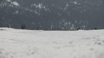 Descent skiers at the ski resort