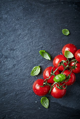 Cherry tomatoes on the vine with basil leaves