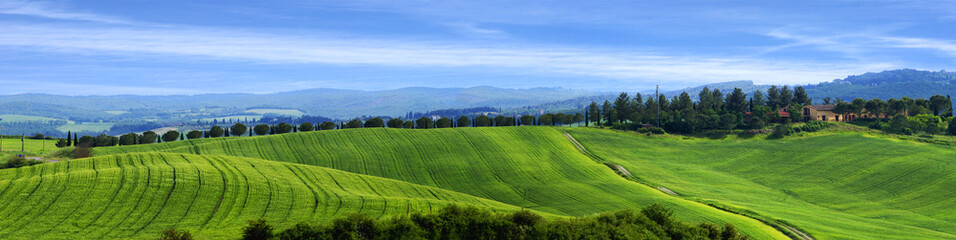 Typical Tuscan countryside on a summer day, Italy.