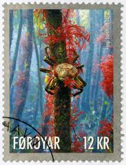 FAROE ISLANDS - 2010: shows Bottom of the Sea