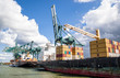 container ship in harbor terminal and cranes i - 76582212
