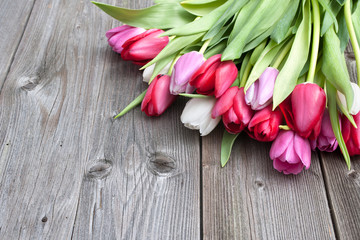 fresh tulips on wooden background