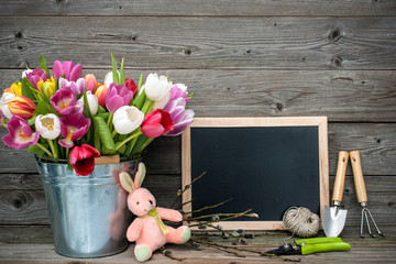 Tulips in a metal bucket with gardening tools