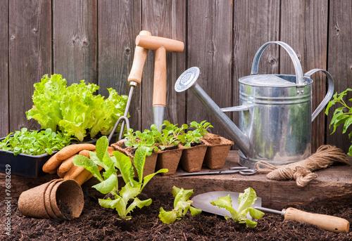 Gardening - 76582629