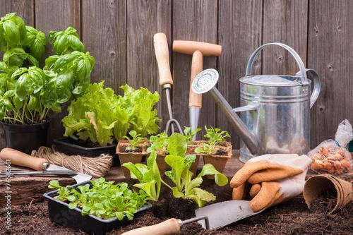 Gardening - 76582661